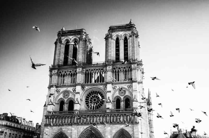 editorial photography Paris photography Notre-Dame de Paris